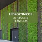jardin vertical hidroponico